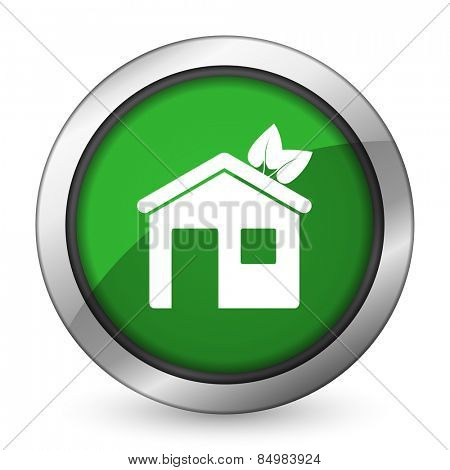 house green icon ecological home symbol