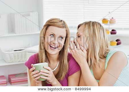 Close Female Friends Talking Together With A Cup Of Coffee At Home