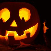 foto of jack o lanterns  - Glowing in a dark Jack - JPG
