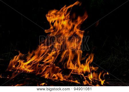 Fire Flame Bonfire Spurts