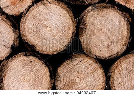 Stack Of Sawn Wood