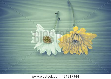 Arrangement Flower On Wooden With Empty Space Background