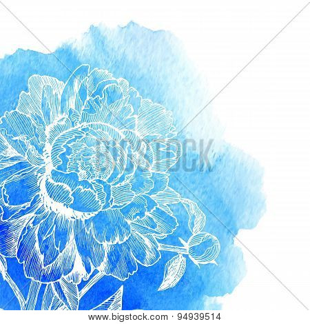 Vector ink drawn white peony at blue watercolor