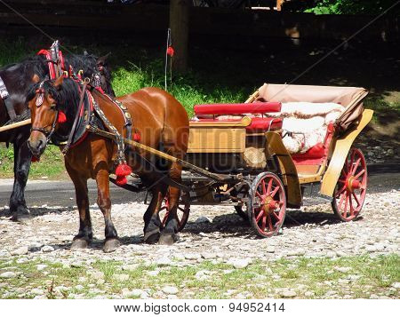 horse with a waggon