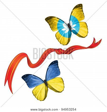 Two butterflies with symbols of Ukraine and Kalmykia (Russia)