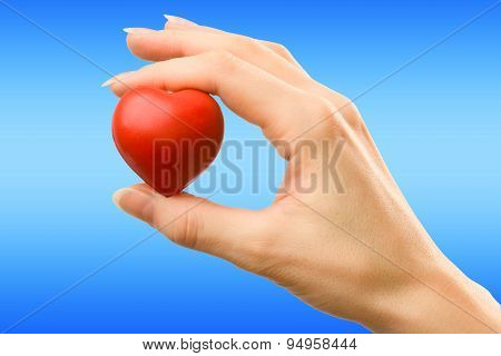 Female Hand With Red Heart