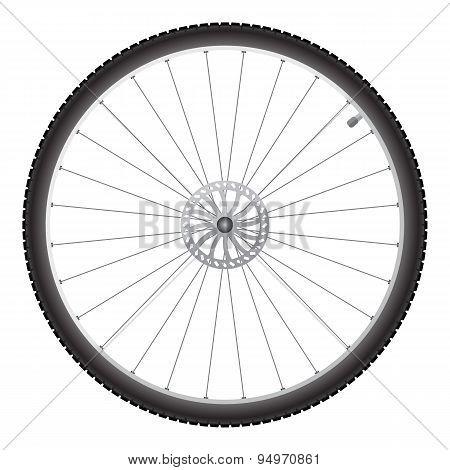 Bicycle wheel, vector