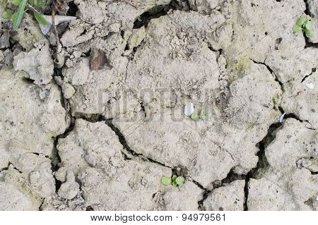 Textures Land Soil With Cracks