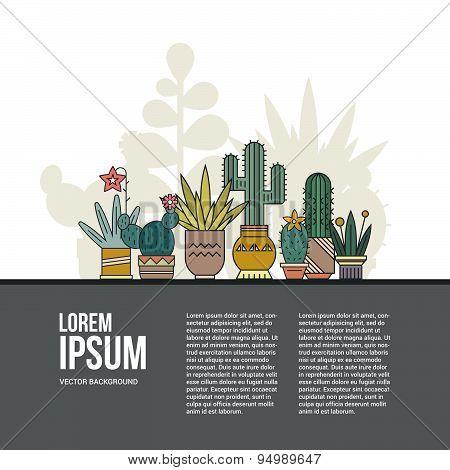 Cactus Concept.