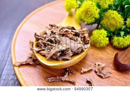 Root dry of Rhodiola rosea in spoon on tray