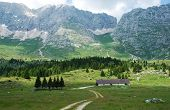picture of farm land  - The rural mountainous landscape of the Altiplano de Montasio in the Friulian Alps in north east Italy - JPG