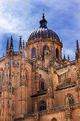 Постер, плакат: Stone Dome New Salamanca Cathedral Spain