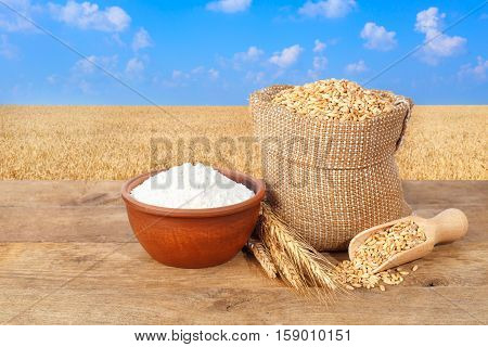 wheat grains in sack. Ears of wheat and wheat grains in bag and flour in bowl on table with field of wheat on the background. Agriculture and harvest concept. Gold wheat field and blue sky