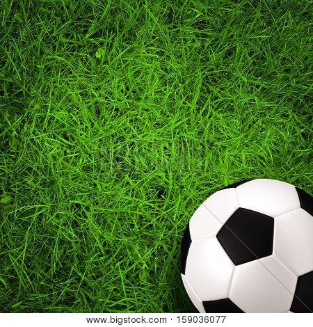 football soccer ball on green grass field