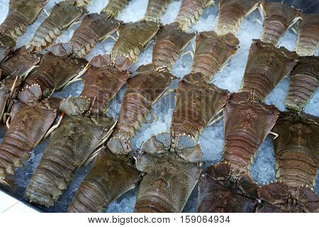 Many fresh crayfish from fishery at seafood market