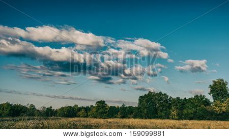 autumn forest and clouds in the countryside