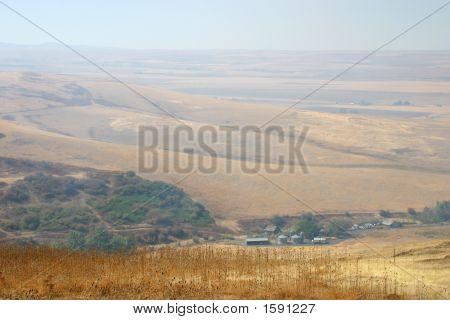 Smokey Wheat Fields