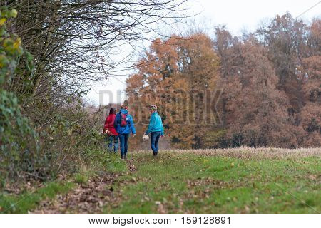 OLDENZAAL NETHERLANDS - NOVEMBER 27 2016: Three unknown female hikers enjoying their walk in an autumn landscape in the netherlands