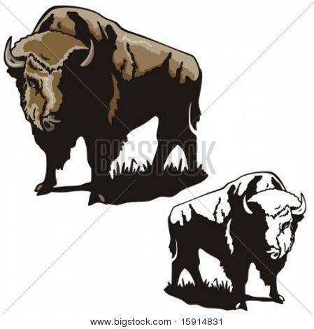 Illustration of a bison.