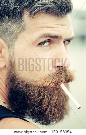 Frown handsome bearded man with beard moustache and gray hair stylish hipster male smoking cigarette outdoor closeup