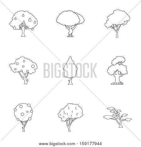 Types of trees icons set. Outline illustration of 9 types of trees vector icons for web