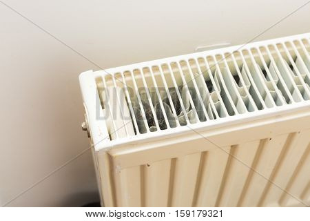 Close Up Of Home Heater