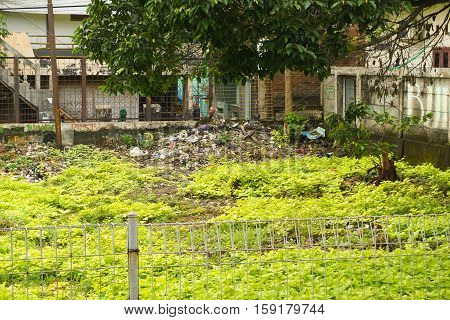 green grash bush side with trash and garbage in indonesia jakarta