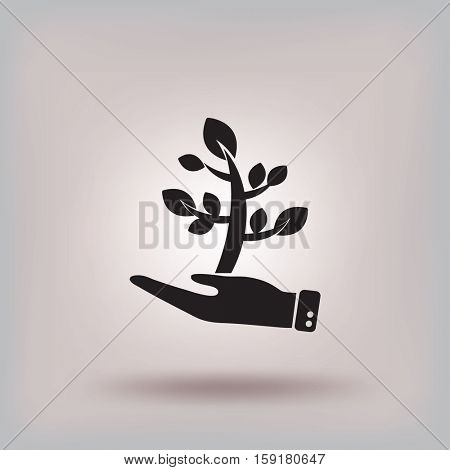 Flat icon. The plant is in the palm of a person. In human hands the fate of the plant world.