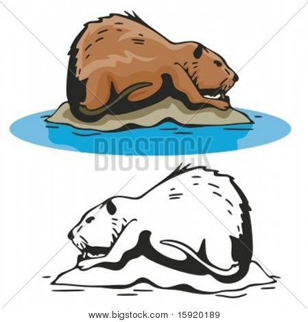 Vector illustration of a beaver.