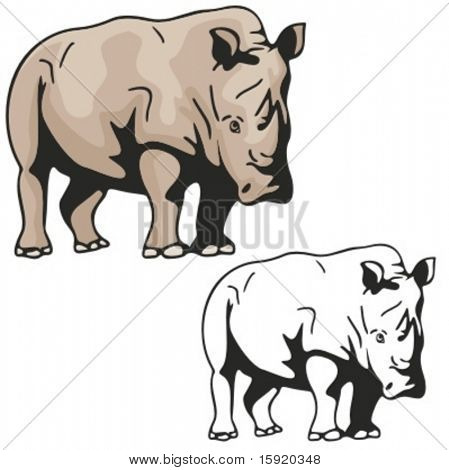 Vector illustration of a rhinoceros.