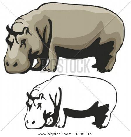 Vector illustration of a Hippopotamus.