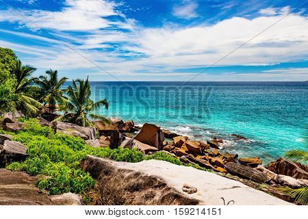 Photo of an amazing beach on a tropical island