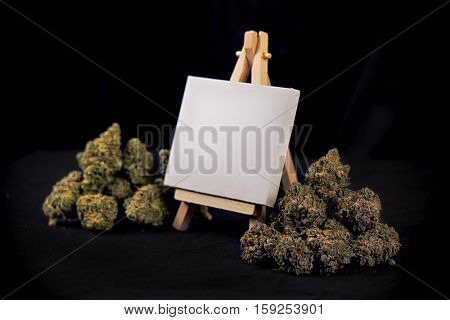 Blank canvas on easel with dried cannabis buds isolated over black background