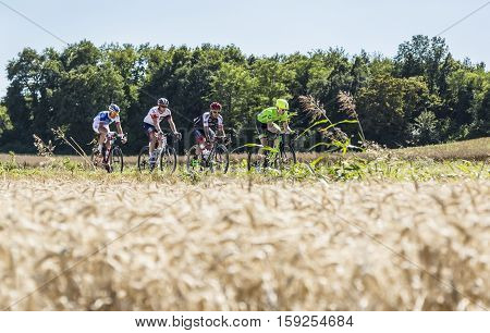 Saint-Quentin-FallavierFrance - July 16 2016: The breakaway riding in a wheat plain during the stage 14 of Tour de France 2016.