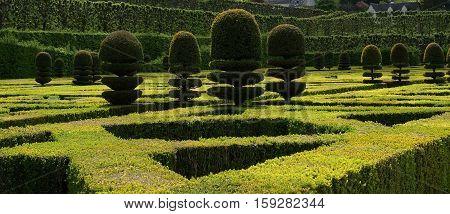 Ornamental Gardens Near Castle Of Villandry, France