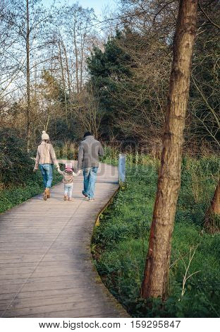 Back view of family holding hands while walking over a wooden pathway into the forest