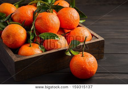 Fresh tangerine clementine with leaves on dark wooden background, selective focus, horizontal with copy space.