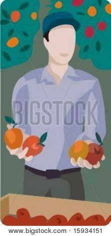 Vector profession series. Harvesting fruits. Check my portfolio for much more of this series as well as thousands of similar and other great vector items.