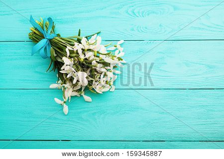 Bouquet of snowdrops on blue wooden background. Top view and copy space.