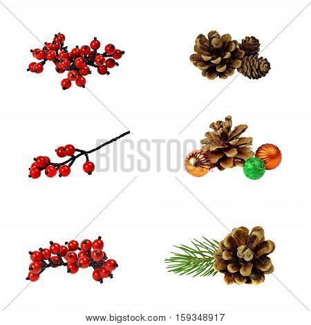 Winter Christmas set for decoration and design. Cedar and pine cones and Christmas tree branch branch with red berries ./ isolation on a white background without shadows /. All to create a festive decor.