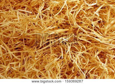 Orange Wood Shavings Texture.