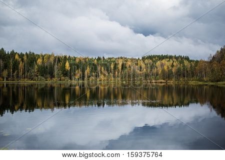 Forest of yellow autumn trees and grey clouds reflecting in calm lake