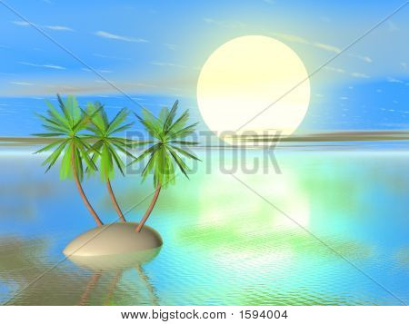 Sea And Island With Palm