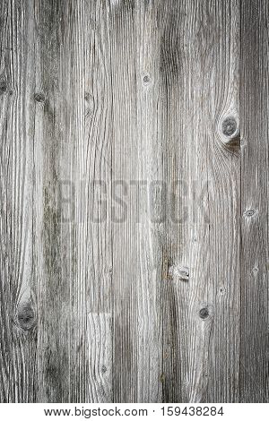 Wooden planks overlay texture for your design. Shabby chic background. Easy to edit wood texture backdrop.