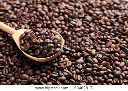 Brown roasted coffee beans background, close up