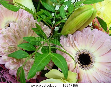Decorative Arranged Colorful Flowers As A Present