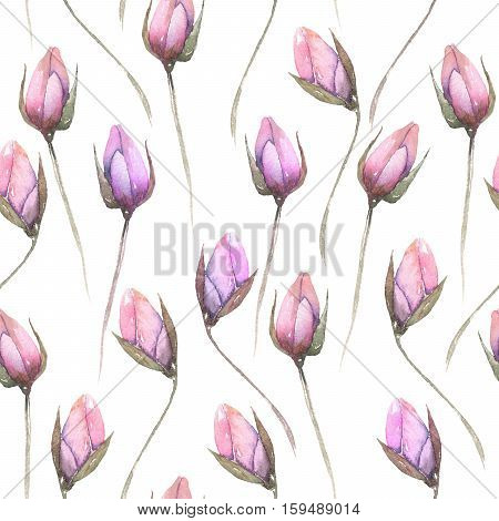 Seamless floral pattern with tender pink flower buds, hand drawn in watercolor on a white background