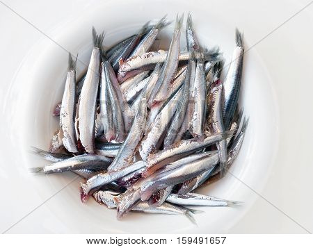 Anchovies headless cleaned prepared and ready in the pot before cooking.