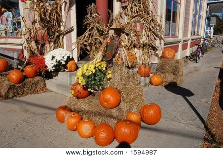 Harvest Decoration In Maine