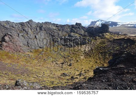 Moss growing on the lava rock inside Eldborg Crater in Iceland.